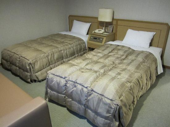 Hotel Route Inn Gotanda : ツインのお部屋でした。