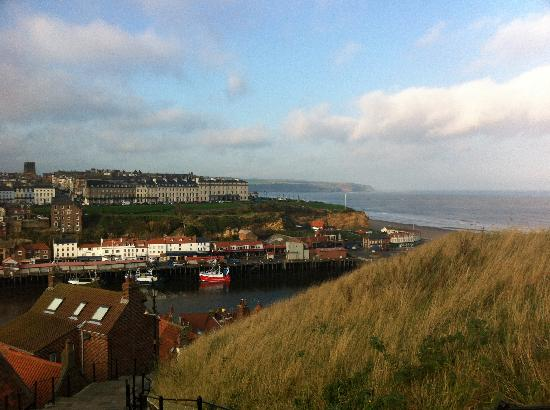 The Shepherd's Purse: Whitby Harbour