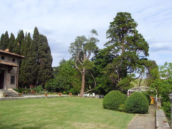 Villa Medicea Lo Sprocco: Vista laterale del Parco posteriore
