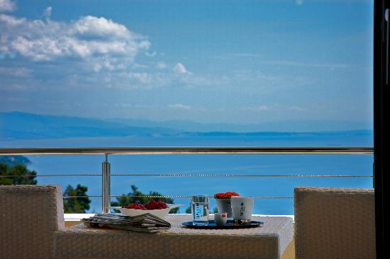 Hotel Villa Kapetanovic: The view