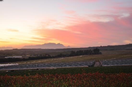 La Pineta : Table Mountain