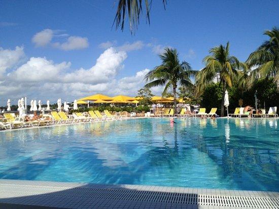 The Standard Miami Pool
