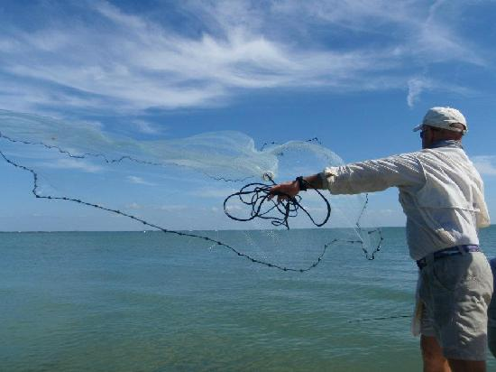 Cayo Costa State Park: Net fishing for Bait!