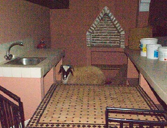 Dar Kamar Zamane: un mouton sur la terrasse .....