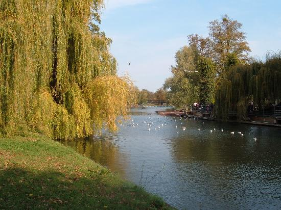 Magdalene College: The Fellows Garden