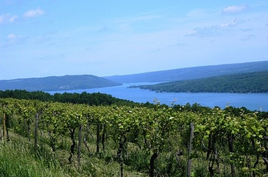 Rochester, Nowy Jork: Many of the region's overlook the shores of Seneca, Cayuga, Keuka and Canandaigua Lakes.