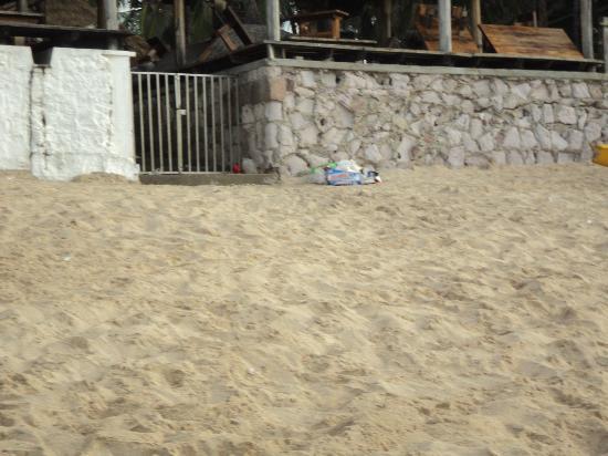 Emporio Mazatlan: Caca de Perro en el Malecon Suciedad y Olor a Miados