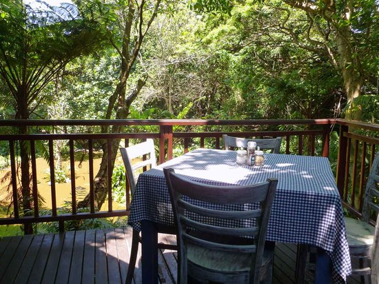 The Waterberry Tea Garden: On the lower deck looking out over the waterhole