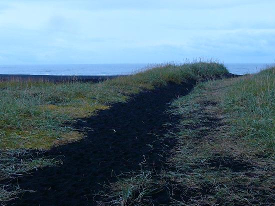 Black Sand Beach: Path through the Dunes