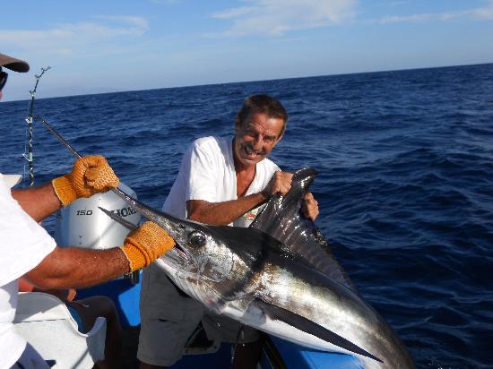 Hotel Los Pescadores: Dewy and a marlin