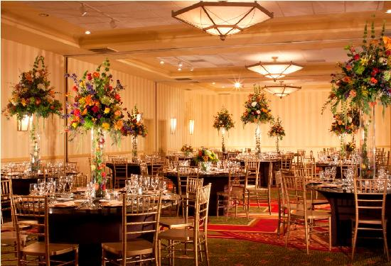 Marriott at Research Triangle Park: Ballroom - Social/Wedding