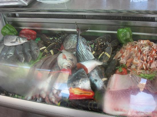Bahia Beach: pescado fresquisímo del día.