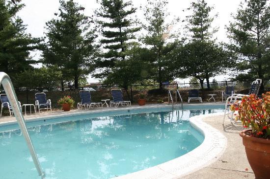 Hampton Inn Cincinnati/Airport South : Outdoor Pool