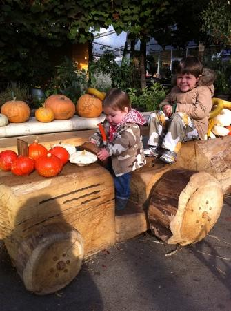 Merlin Farm Cottages Mawgan Porth: Halloween at Eden project.