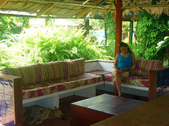 Papagayos Beach Hotel: RECEPCION