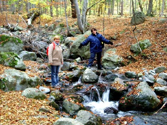 mountain vitosha Traventuria is a specialist in organizing one-day hiking treks from sofia to the neighbouring mountains of rila and vitosha these can be either guided or self-guided.