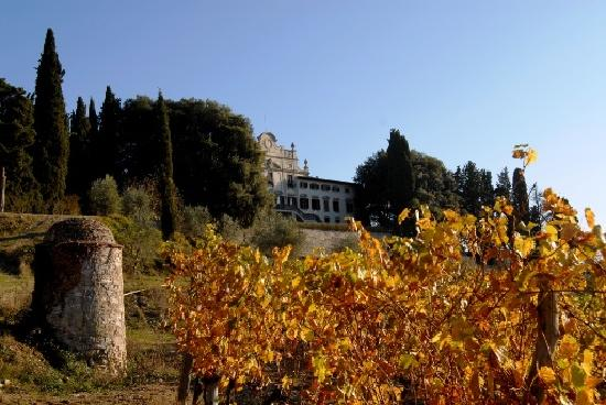 Villa  Vistarenni: Villa fron the vineyard