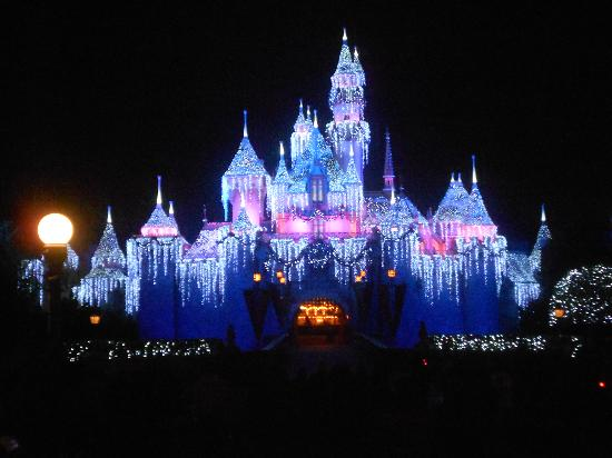 Image result for disneyland at night