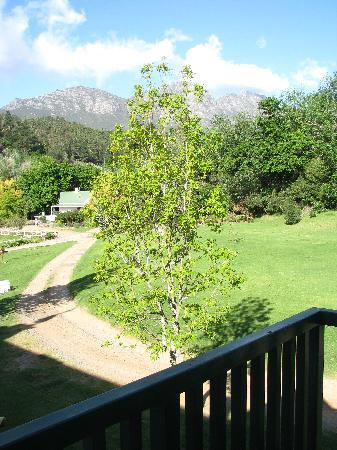 Knorhoek: Uitzicht vanaf balkon