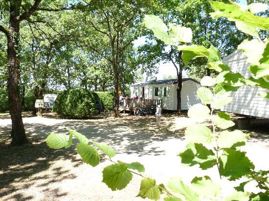 Camping les Hirondelles : locatif aux Hirondelles