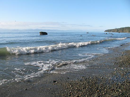 Ocean Wilderness Inn: Beach at bottom of property