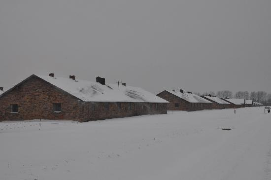 Auschwitz-Birkenau State Museum: Winter view of Birkenau