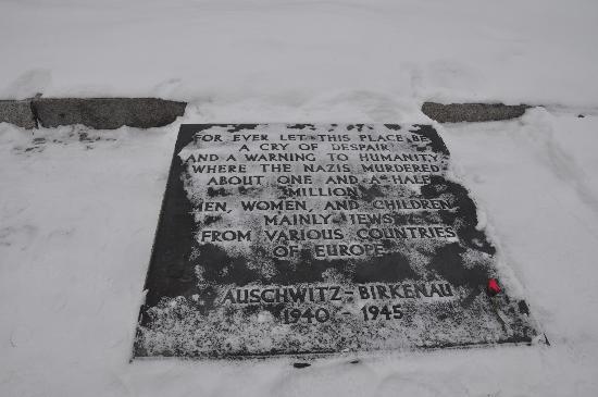 Auschwitz-Birkenau State Museum: A memorial