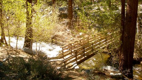 Inyo National Forest : bridge