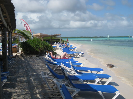 Kralendijk, Bonaire : Lounge chairs next to The Beach Hut