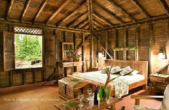 Bosques Del Saman - Alcala: Esta es la habitación donde pasamos la noche, ambientada con aves del paraíso