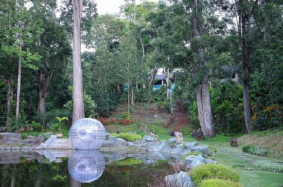 The Windflower Resort and Spa, Coorg: Another activity - the zorb ball on the lake in the resort