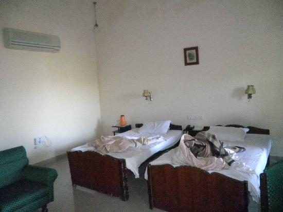Hotel Anand Bhawan: delux room