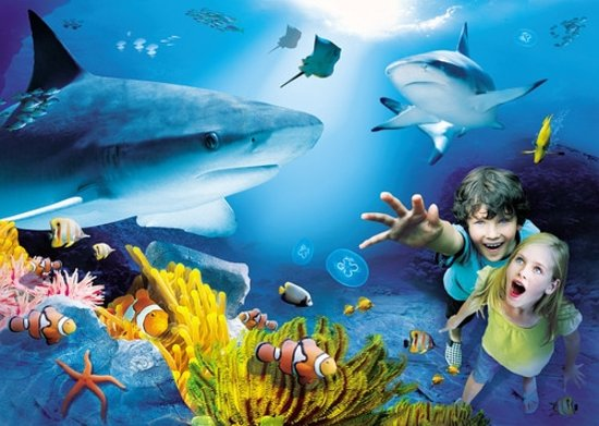 Melbourne Aquarium Cafe Prices