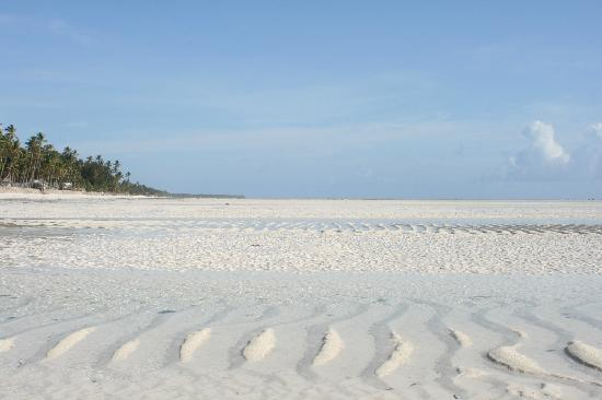 Paje Beach / Low Tide / White Sands