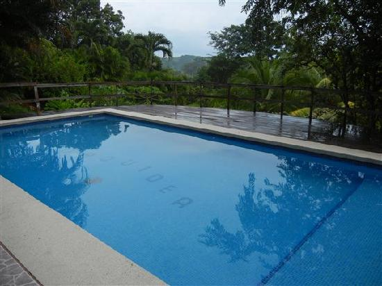 Albergue Alma de Hatillo: Swimming pool and the views