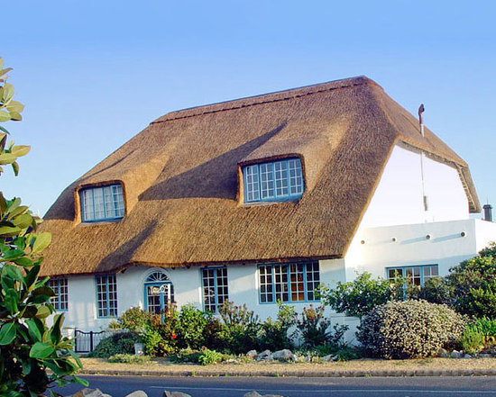 Cliff Cottage - just across the road from the ocean and cliff paths