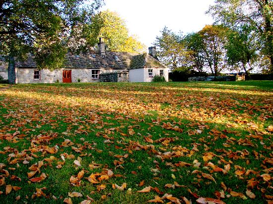 Dell of Abernethy Cottages: Autumn Dell