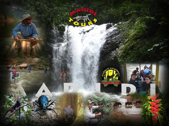 Camping Madidi Tours - Private Day Tours: 1