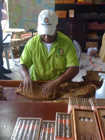 Natura Park Beach - EcoResort & Spa: exursion eco caraibe entre autre fabrique de cigare
