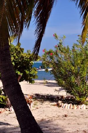 North Beach Island: 1