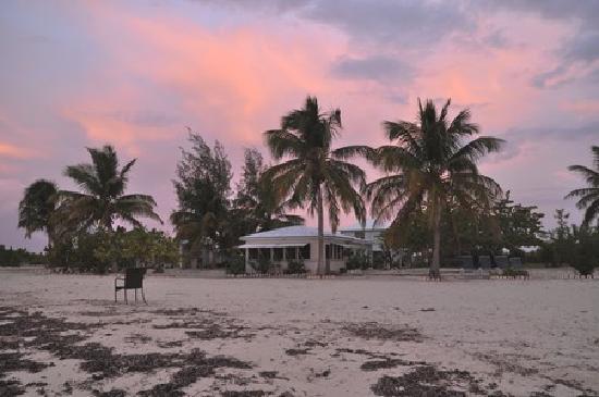 North Beach Island: 2