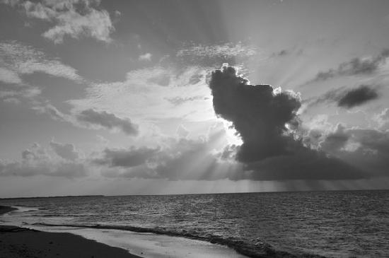 North Beach Island: 3