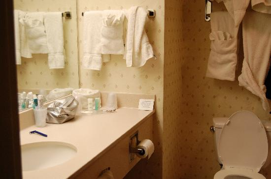 Comfort Inn and Suites Newark: Bagno del Hotel