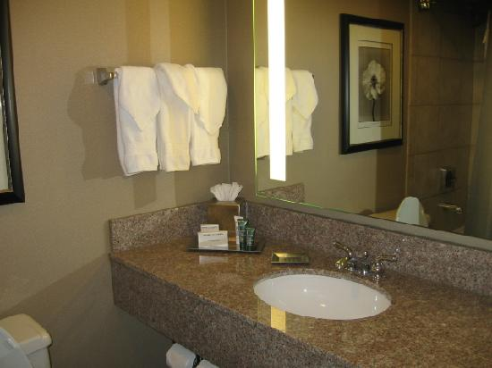 Hilton Washington DC North Gaithersburg: the bathroom