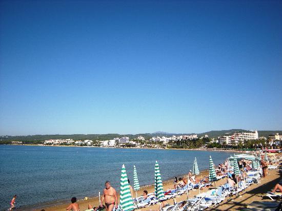 Lonicera World Club & Beach: Beach
