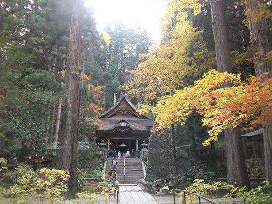 Komagane, Япония: 紅葉も相成り見ごたえバッチリ