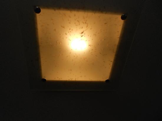 Cabello Square: Lounge Light