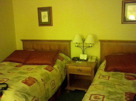 Stoweflake Mountain Resort & Spa: The double bed room