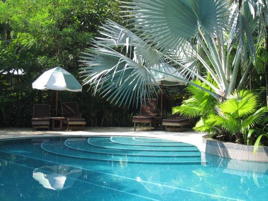 Harmony Hotel Nosara: Clean, refreshing chlorine free pool