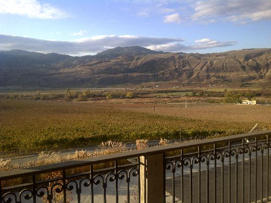 Burrowing Owl Estate Winery Guest House: Burrowing Owl estate from room balcony